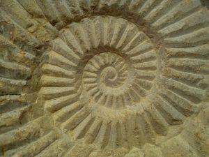 |La Geometría Sagrada se usa desde la antigüedad. Ordena y aprovecha las energías telúricas en provecho de un objetivo en un espacio concreto.